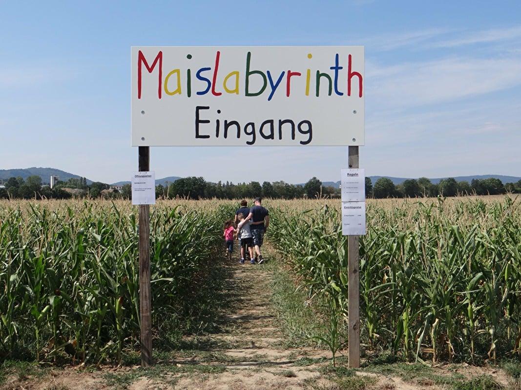 Maislabyrinth Liederbach Liederbach Am Taunus Taunus Info
